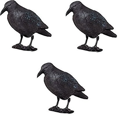 3 x Kunststoff-Rabe zur Taubenabwehr mit Stock und Füßen, Taubenschreck, Lockvogel für die Jagd