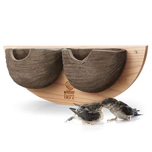 wildtier herz I 2er Schwalbennest, Nisthilfe Natur für Mehlschwalben aus Massiv-Holz und naturgetreuen Schlammerden - unbehandelt, wetterfest, Schwalben Nistkasten