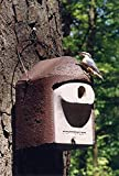 Schwegler Naturschutzprodukt Nisthöhle Nistkasten Vogelhaus Typ 2GR oval Flugloch 30 x 45 mm Satz 2 Stück
