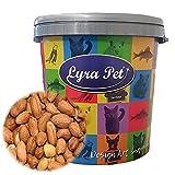 Lyra Pet® 10 kg Erdnusskerne mit Haut HK Südamerika Erdnüsse Vogelfutter Wildvogelfutter in 30 L Tonne