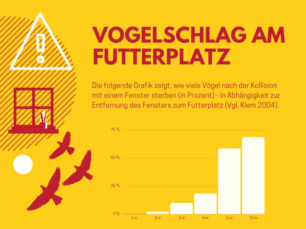Vogelschlag am Futterplatz Grafik