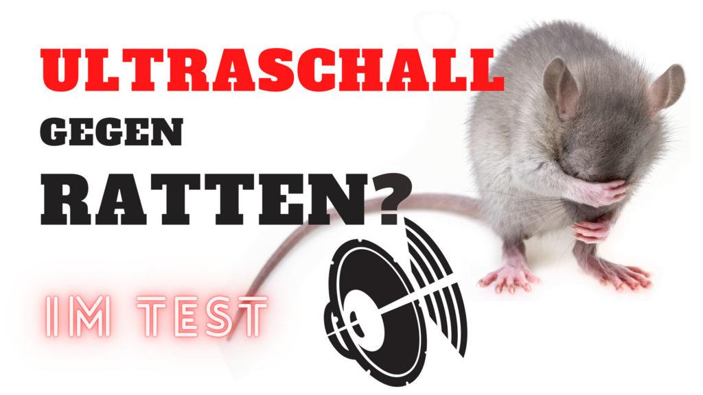 Ultraschall gegen Ratten im Test