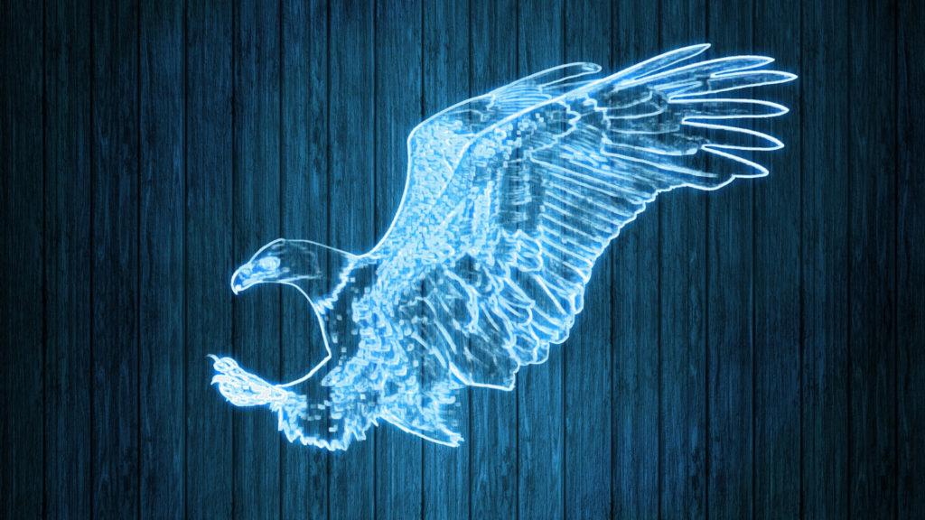 Adler Lichtbild Laser